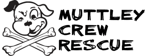 Muttley Crew - Milwaukee Wisconsin